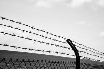 Stacheldrahtzaun - Grenze, schwarzweiß