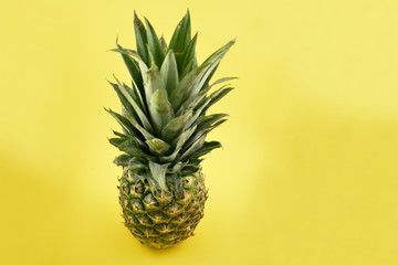 Ripe pineapple stock images. Pineapple on a yellow background