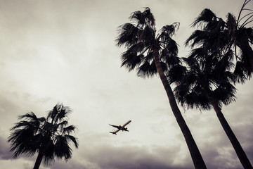 travel by flight in tropical place