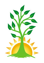 A growing tree against the backdrop of the rising sun. The tree of life, sign, logo