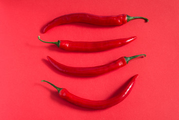 Chili pepper on a red background