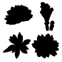 Black silhouettes of succulents and cactuses set. Trendy tropical design for textile. Set of various hand drawn cacti exotic plants. Vector.