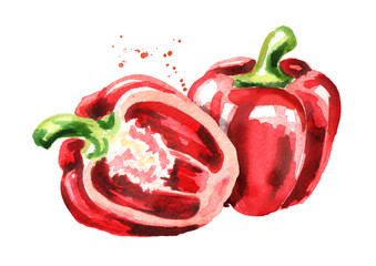 Red Bell peppers. Watercolor hand drawn illustration, isolated on white background
