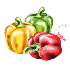 Red, green and yellow Bell peppers. Watercolor hand drawn illustration, isolated on white background