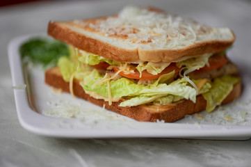 A delicious sandwich with salad and chicken. Sprinkled with cheese. A quick delicious Breakfast