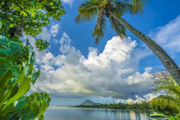 Wall Mural - Beautiful ocean landscape, bay in a tropical Mauritius island, La Gaulette region.