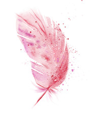 Pink flamingo watercolor feather.