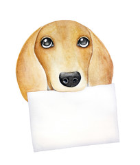 Dog portrait holding clean piece of paper as place for any text message or information design. Big brown eyes, small funny nose and red fur. Hand drawn water color graphic drawing on white, cut out.