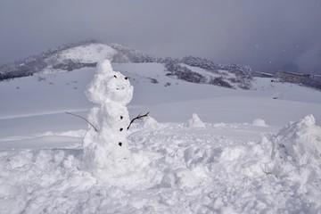 雪だるまを作る子供