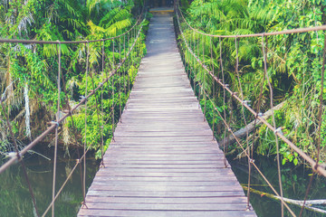 wooden bridge to the forest, nature concept
