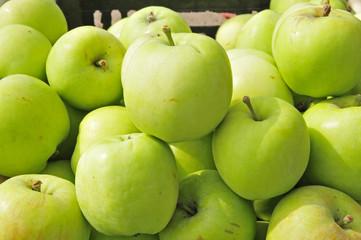 Put the apple on the market