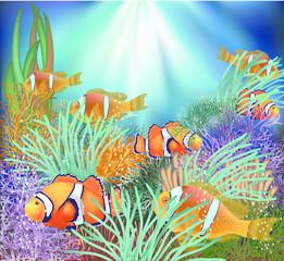 Underwater tropical wallpaper, vector illustration