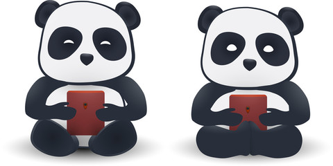 two pandas isolated on white background.