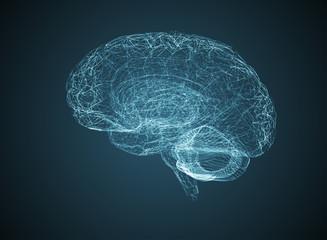 three-dimensional brain on a dark background