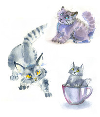 watercolor cats gray