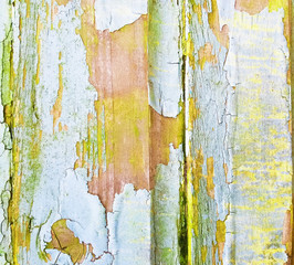 Abstract rustic peeling paint on wooden pane surface, background texture