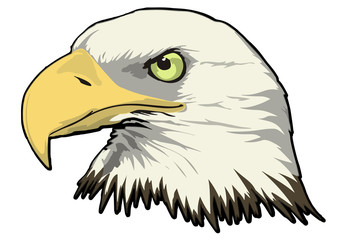 Eagle Head Vector - Side View