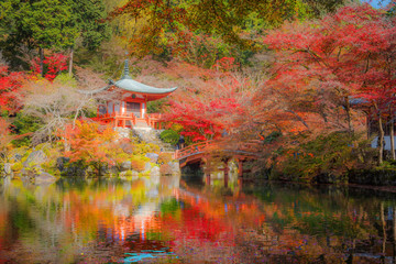 Autumn season, The leave change color of red in Temple , Daigoji Temple, Kyoto Japan.