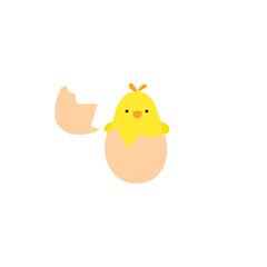 Chicken in the broken egg
