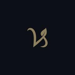 letter VS logo icon template