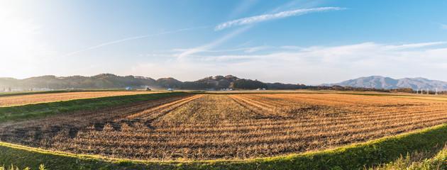 田園風景の夕景