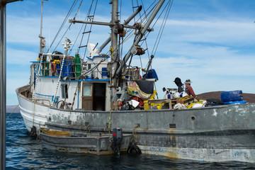 Barco de pesca del atún.