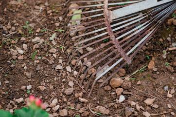 Fotografía de un rastrillo oxidado en el huerto de casa.
