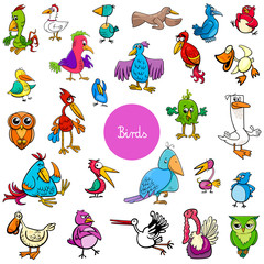 cartoon birds animal characters big collection