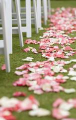 Pink rose petal runner for outdoor wedding.