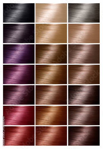 Color Chart For Hair Dye Tints Hair Color Palette With A Range Of