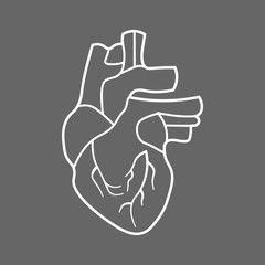 Stylized human heart anatomy line icon.