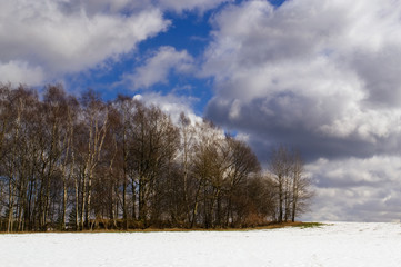A landscape with forest, snow, meadows in springtime and a dramatic sky.