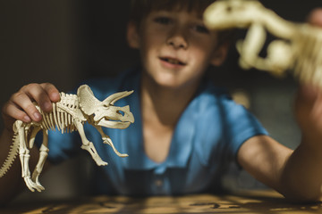 Boy playing with toy dinosaur at home.