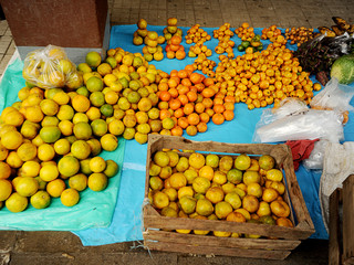 oranges at open farmer's market