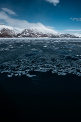 melting ice shelf in an arctic fjord