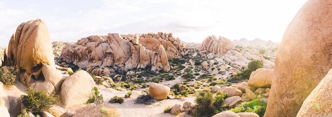 Joshua Tree hiking trail between rocks at sunset