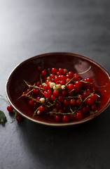 Fresh picked red currants in ceramic bowl