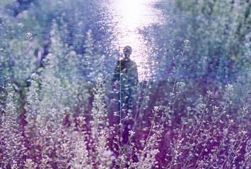 Silhouette of woman in plants by lake