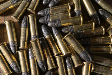 22 ammunition rounds