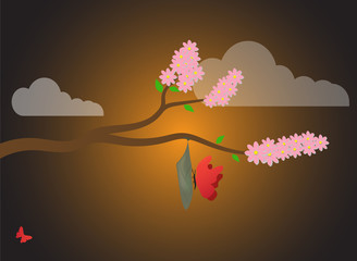 The spring background of nature is a cherry branch, a cocoon (chrysalis) and butterflies at sunrise.Cocoon, metamorphosis, insect