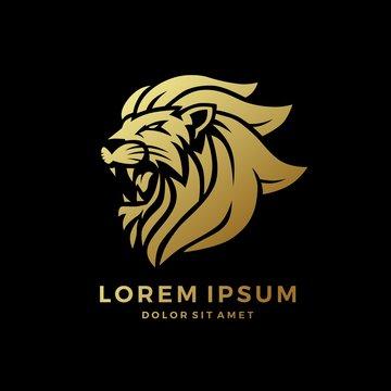 roaring lion logo king gold on black background vector download