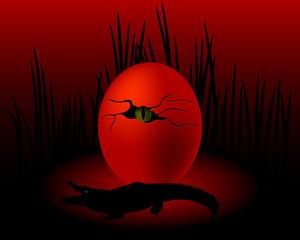 crocodile's egg with an eye