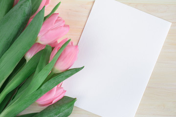 Soft flat lay with pink tulips and white card. Top view. Mock up