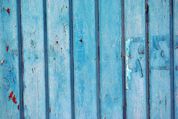 Wooden old door or gate painted with blue shabby paint and red spots, grunge background texture