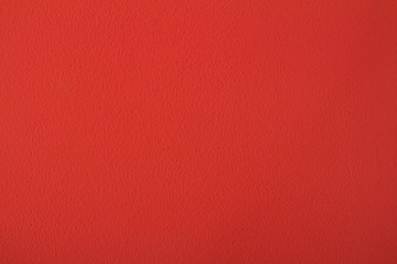 Coral wall background blank with space for text