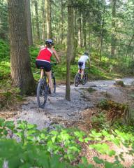 mit dem Mountainbike im Wald unterwegs