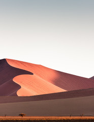 Printed roller blinds Deep brown Namib Desert, sand dunes at sunset, Sossusvlei, Namibia, Africa