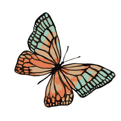 Illustration of a watercolor butterfly with a black outline.