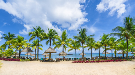 Wall Mural - Tropical scenery with amazing beaches of  Mauritius island