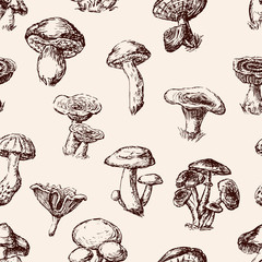 Seamless background of the edible mushrooms